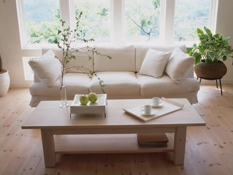 home-staging-business
